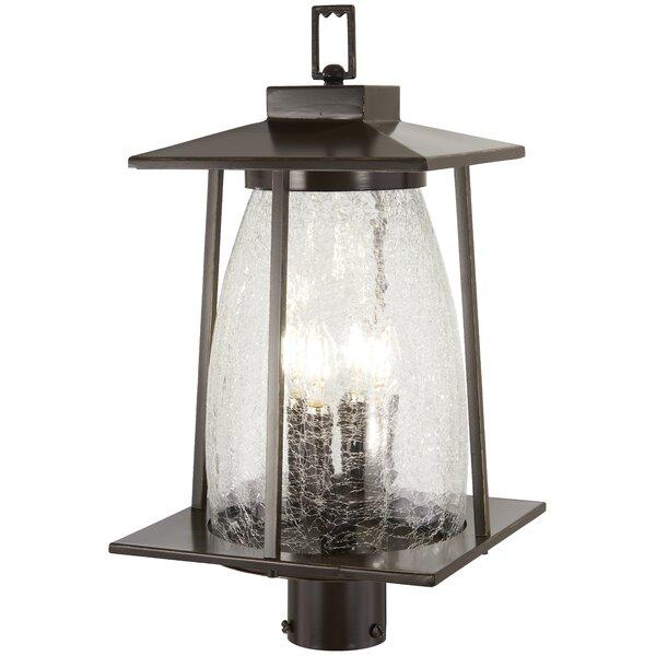 Helmick Outdoors 4-Light Lantern Head by Alcott Hill
