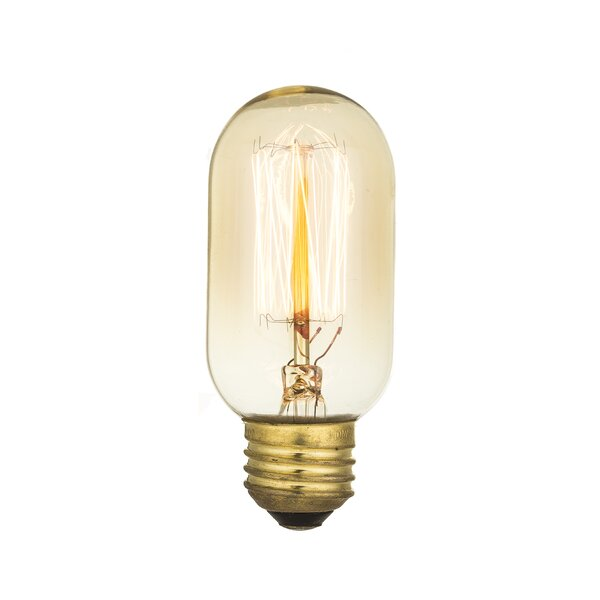 40W Light Bulb by String Light Company