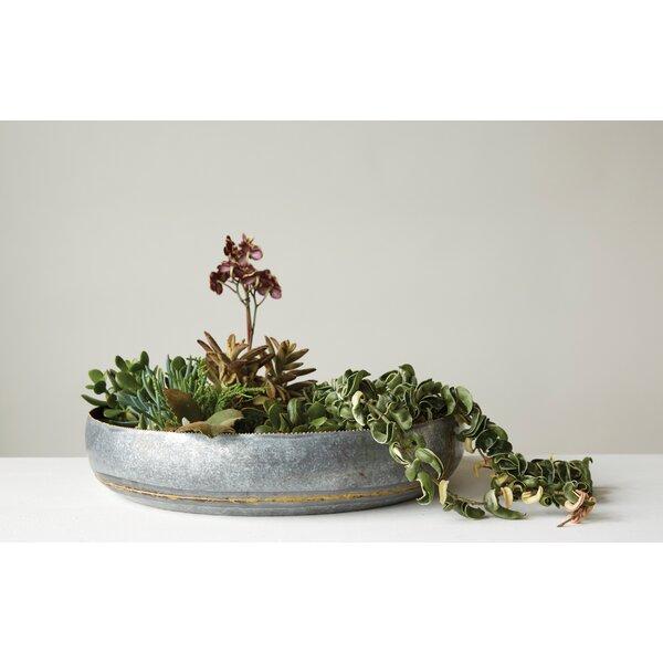 Ellsworth Iron Decorative Bowl by Bungalow Rose