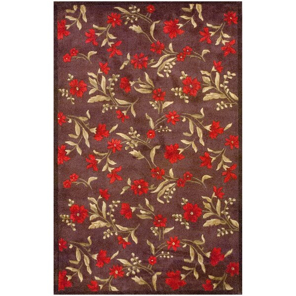 Dark Brown Area Rug by Herat Oriental