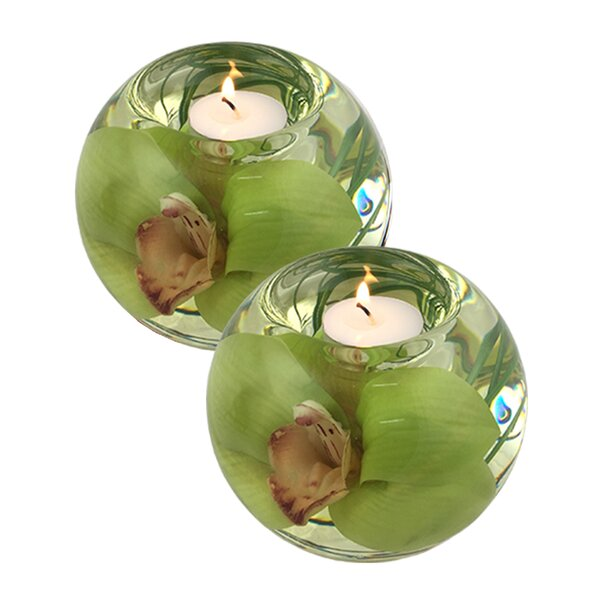 Cymbidium Orchid Glass Tealight (Set of 2) by Bloomsbury Market