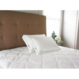 IsoCool Memory Foam Standard Pillow ByCarpenter Co.