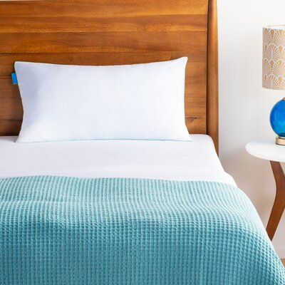 King Bed Pillows You Ll Love In 2020 Wayfair