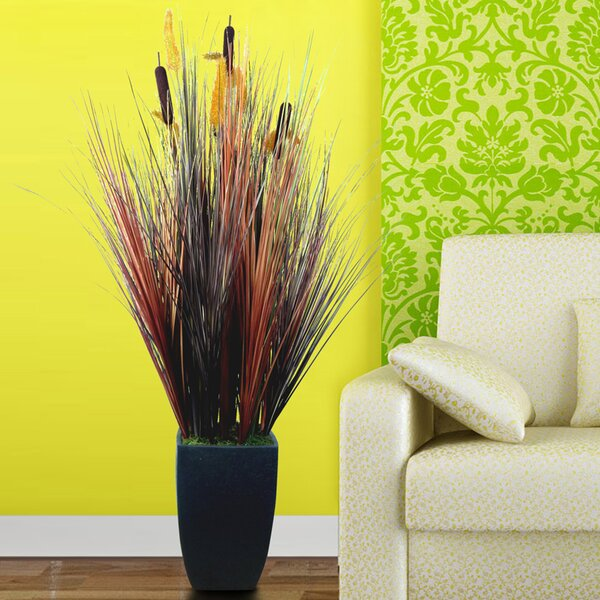 Silk Contemporary Onion Grass in Square Tapered Planter by Wildon Home ®