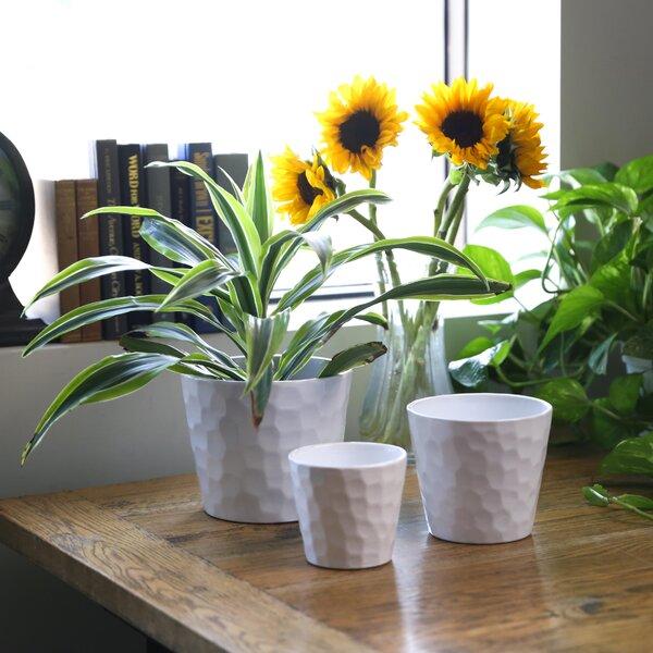 Jayden Round 3 Piece Ceramic Pot Planter Set by Charlton Home
