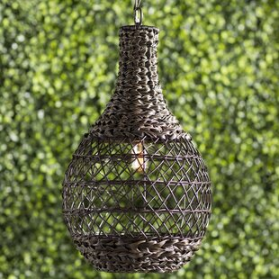 Price Check Durrant 1-Light Outdoor Pendant By Mistana