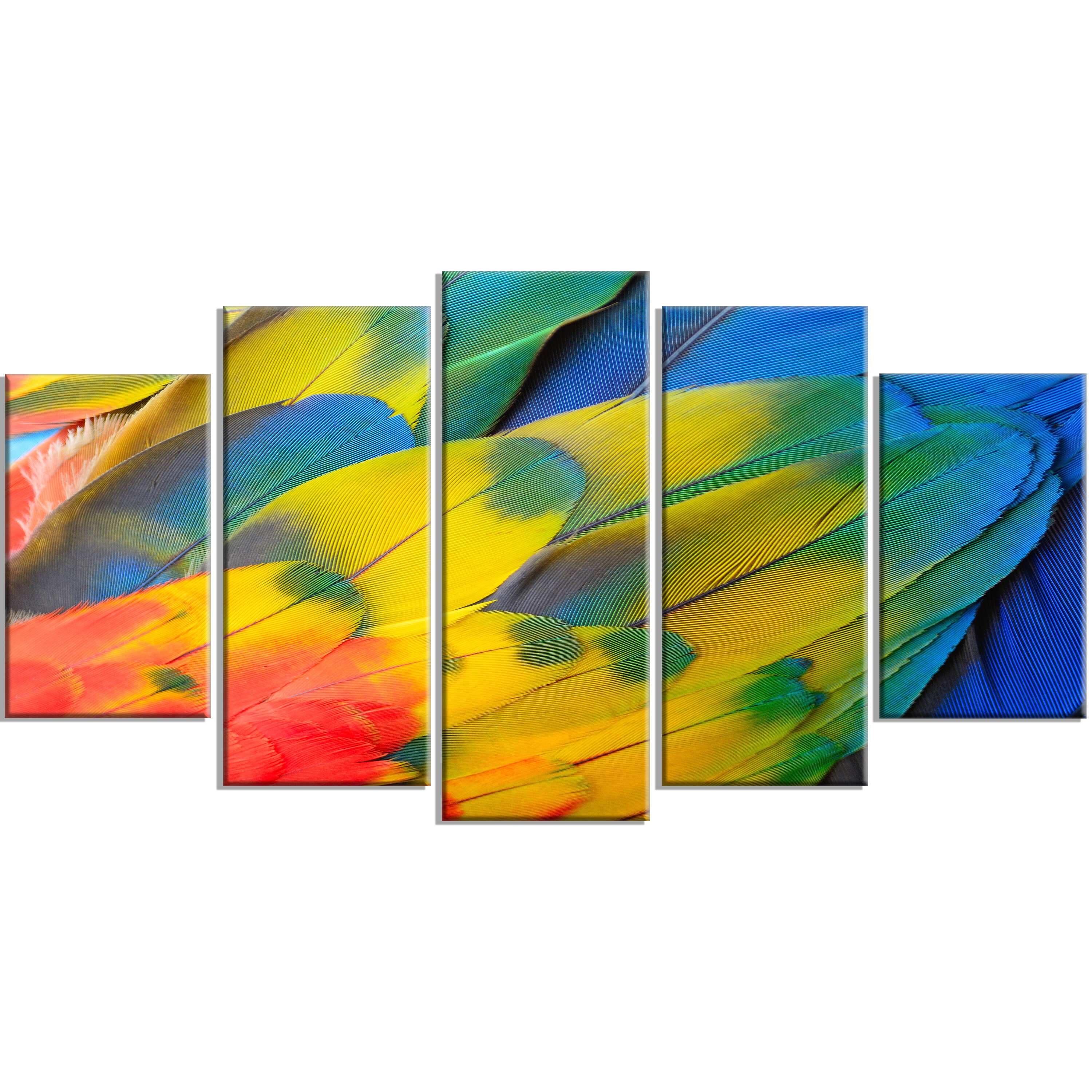 DesignArt \'Scarlet Macaw Feathers\' 5 Piece Wall Art on Wrapped ...