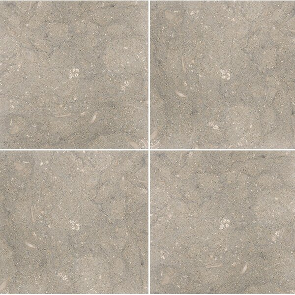 Sea Grass 12 x 12 Limestone Field Tile in Gray by Parvatile