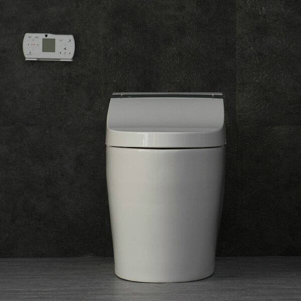 Dual Flush 4.8 GPF Elongated One-Piece Toilet by WoodBridge