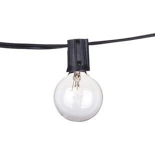 Order 14-Light Globe String Lights By Aspen Brands