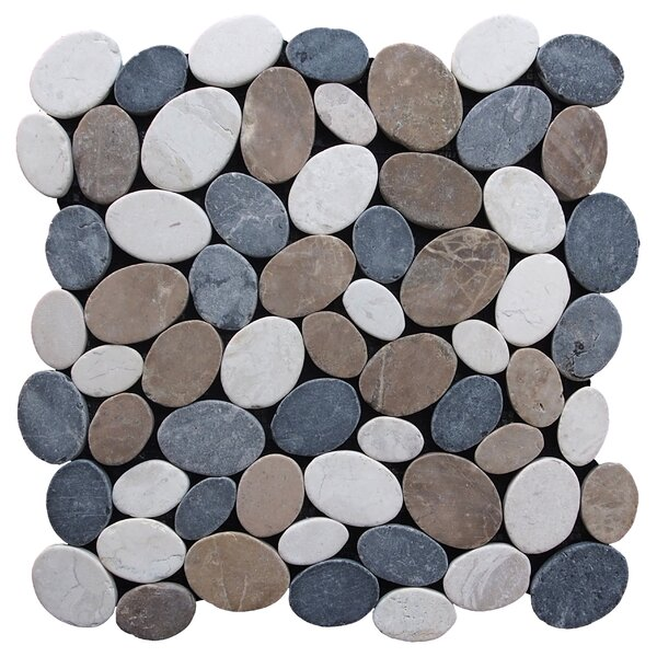 Coin Random Sized Natural Stone Pebble Tile in Multi by Pebble Tile