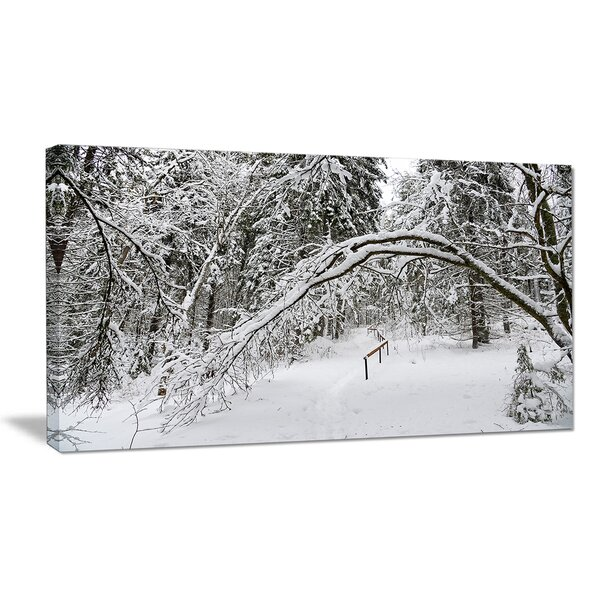 Foggy Black and White Winter Forest Photographic Print on Wrapped Canvas by Design Art