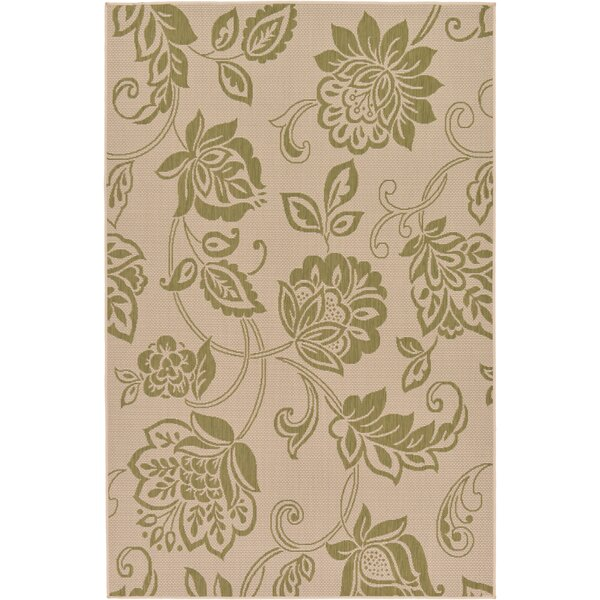Warlick Light Green Outdoor Area Rug by Darby Home Co