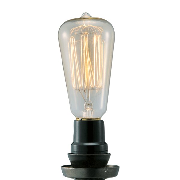 40W Light Bulb (Set of 2) by BIDKhome