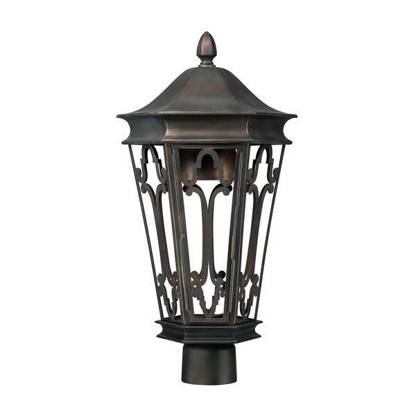 Dark Sky Outdoor 1-Light Lantern Head by Capital Lighting