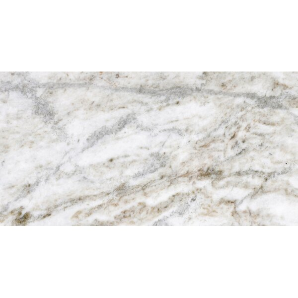 Marble 12 x 24 Tile in Kalta Fiore by Emser Tile
