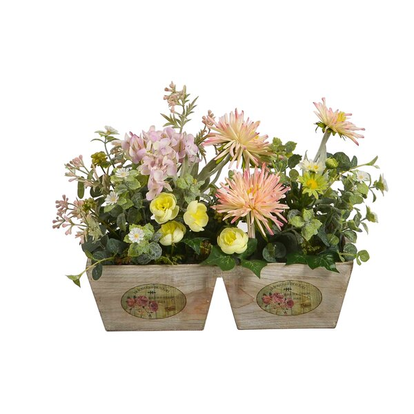 Floral Arrangement in Pot by Ophelia & Co.