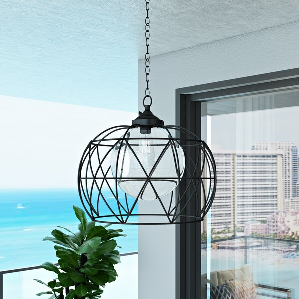Doane 1-Light Outdoor Pendant by Orren Ellis