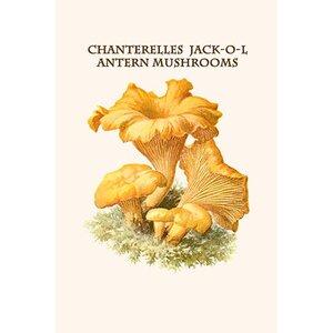 'Chanterelles Jack-O-Lantern Mushrooms' by Edmund Michael Painting Print by Buyenlarge