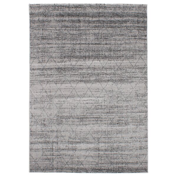 Duchene Light Gray Area Rug by Williston Forge