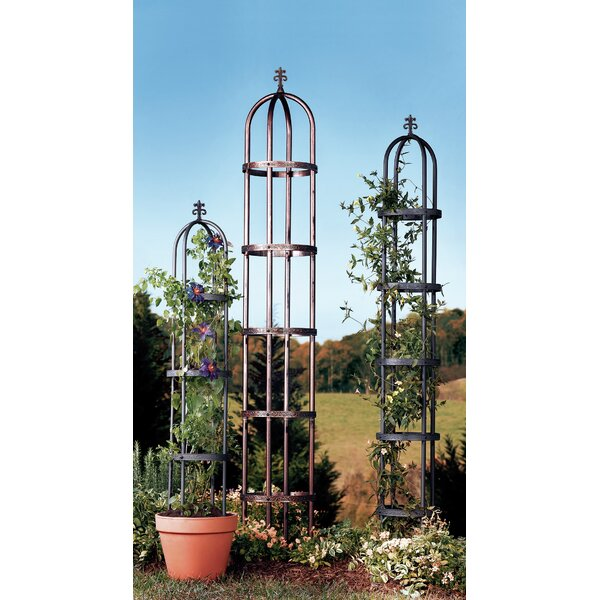 Steel Obelisk Trellis by Plow & Hearth