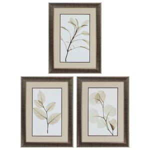 Sage Salal Eucalypt 3 Piece Framed Graphic Art Set by Propac Images