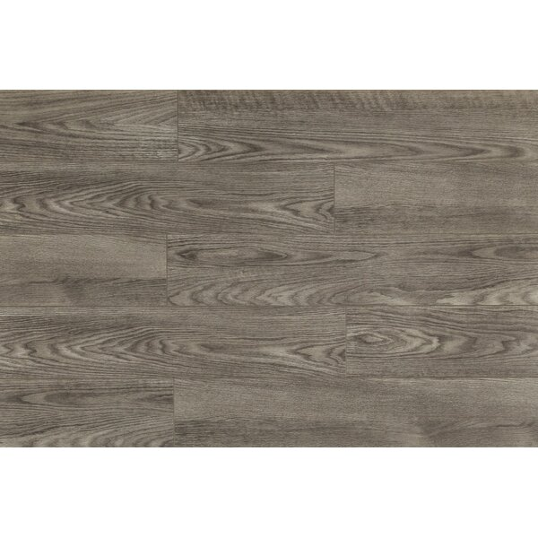 Shoreline 7.5 x 48 x 12mm Oak Laminate Flooring in Crystal Cove by Bellami