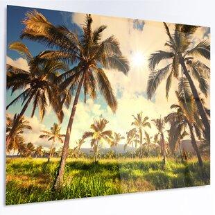 U0027Beautiful Palm Plantation In Hawaiiu0027 Photographic Print On Metal. By  Design Art