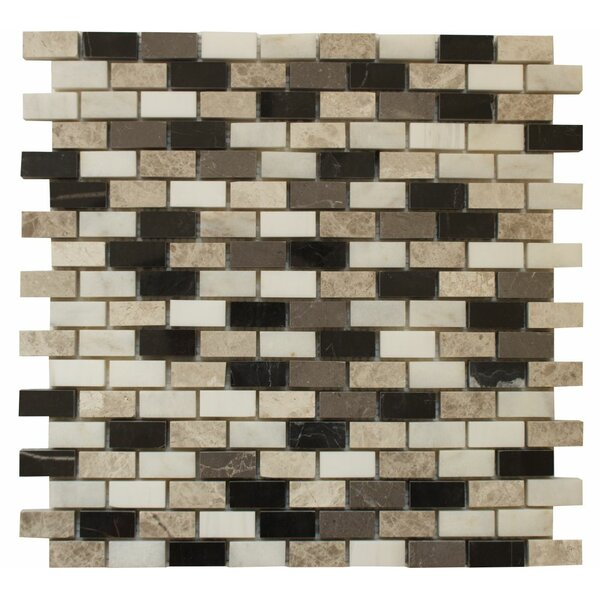 0.63 x 1.25 Marble Mosaic Tile in Levanzo by Ephesus Stones
