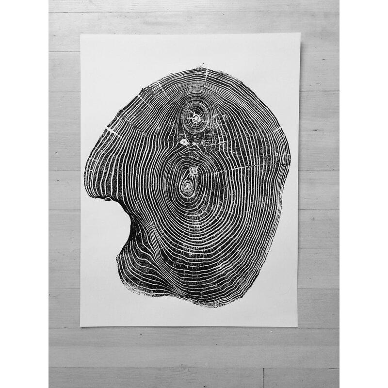 Lintonart Tree Ring Art Print From Mulberry Tree Graphic Art