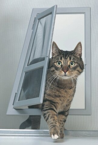 Screen Door Pet Passage by Perfect Pet by Ideal