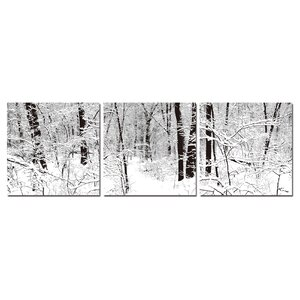 'Winter Woods' 3 Piece Framed Photographic Print on Wrapped Canvas Set by Ivy Bronx