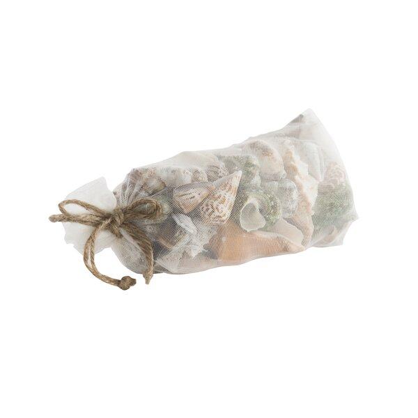 Natural Seashell Bag Vase Filler by Panama Jack Home