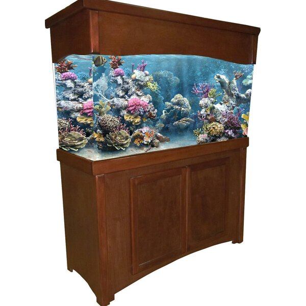 Calypso Birch Series Aquarium Stand and Canopy Combo by RJ Enterprises