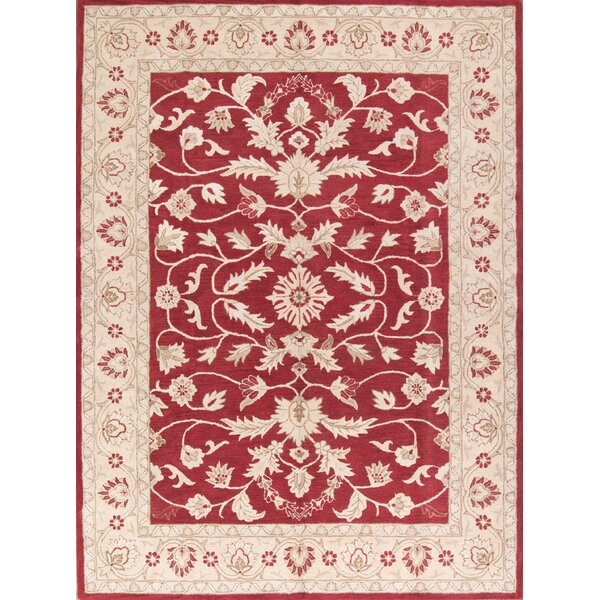 Bovill Agra Oriental Hand-Tufted Wool Red/Ivory Area Rug by Canora Grey