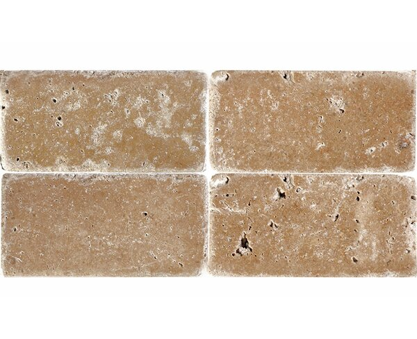 4 x 8 Travertine Field Tile in Expresso by Parvatile