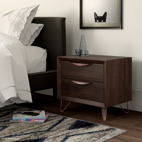 Reyer 2 Drawer Nightstand by Mercury Row