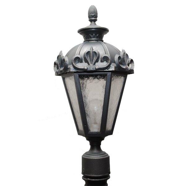 Petrey 1-Light Lantern Head by Alcott Hill