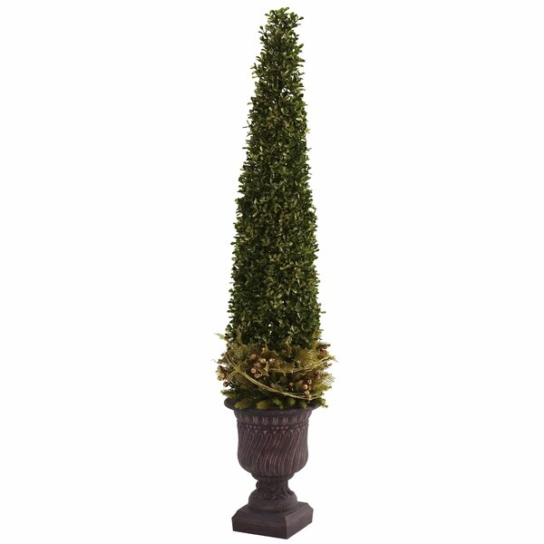 Mixed Boxwood and Holly Topiary in Urn by Darby Home Co
