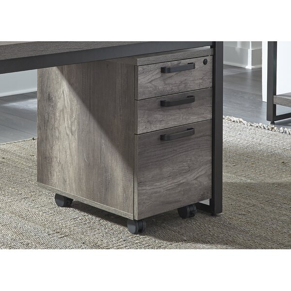 Arkin 3-Drawer Mobile Vertical File by Foundry Sel
