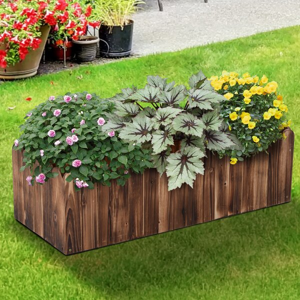Leif Scalloped Edge Fir Wood Planter Box by Millwood Pines