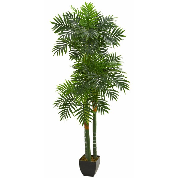 Triple Areca Floor Palm Tree in Planter by Bay Isle Home