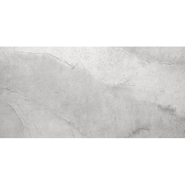 St Moritz II 12 x 24 Porcelain Field Tile in Silver by Emser Tile