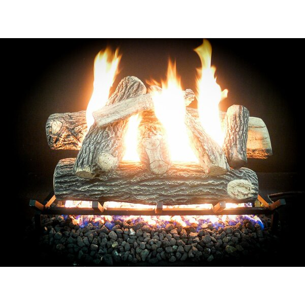 Complete Match Light Great NW Natural Gas Log Kit by Dreffco