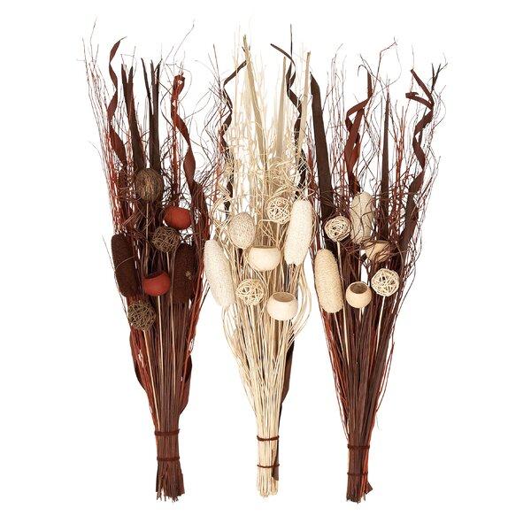 3 Piece Decorative Stem Set by Cole & Grey