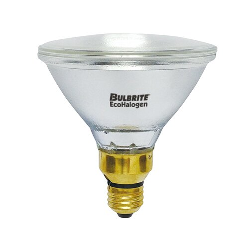 120-Volt Halogen Light Bulb (Set of 5) by Bulbrite Industries
