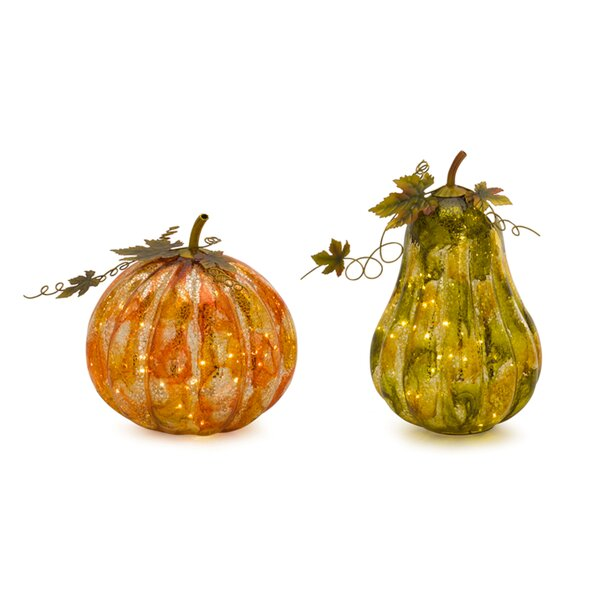 Pumpkin/Gourd 2 Piece with Lights/Timer Lighting Accessory Set by The Holiday Aisle