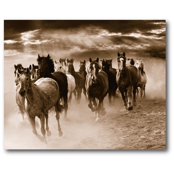 Wild Horses I Photographic Print on Wrapped Canvas by Courtside Market