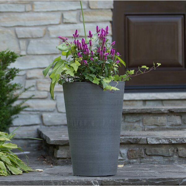 Valencia Composite Pot Planter by Charlton Home