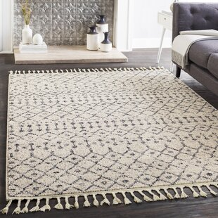 Hudgens Distressed Southwestern Beige Area Rug